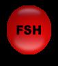 fsh-regulacion-hormonal-ciclo estral